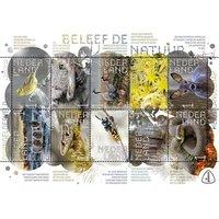 Beleef de Natuur-Dwingelderveld (postzegelvel)