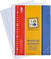 Ringbandpapier ruit 10x10 mm 23-rings A4 papier 100 stuks